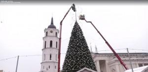2019.12.02 Kalėdų eglutė Vilniuje. Papuošimo darbai (2aa)